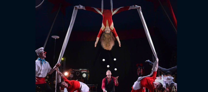 CRAZY DREAM CIRCUS